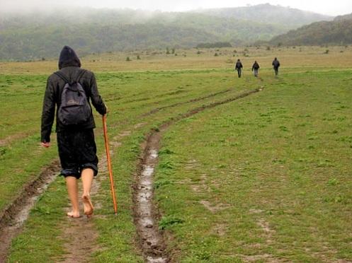 Caminar con zapatillas minimalistas